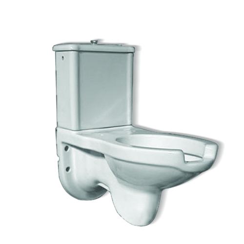 Wc monoblocchi per bagni disabili for Inodoro minusvalidos